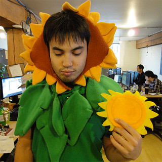 Picture of a sad looking man dressed in a sunflower costume