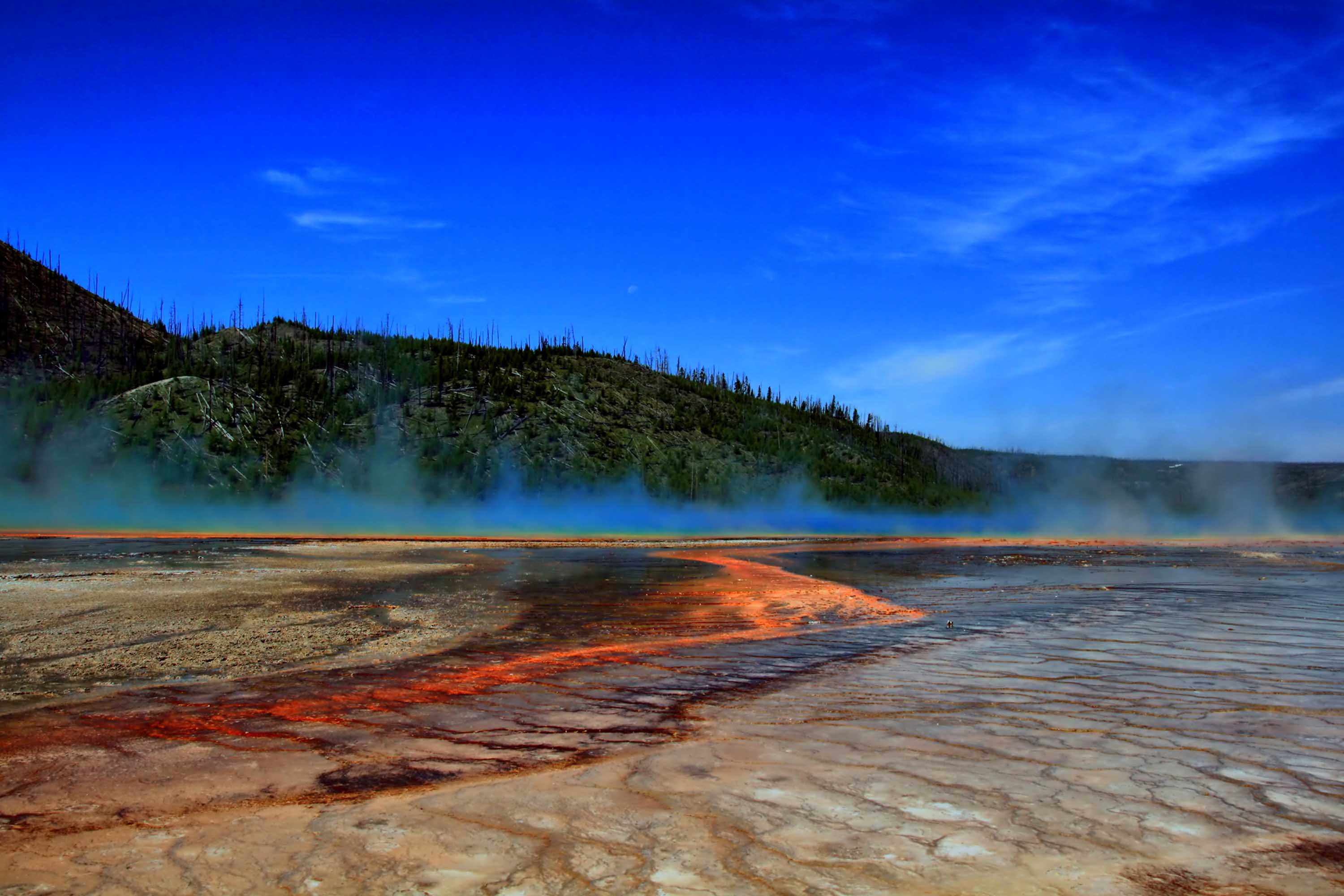 Brilliant orange algae and bacteria by a hot spring