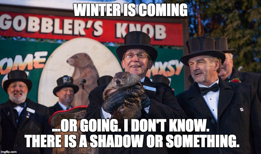 A GIF of Punxsutawney Phil