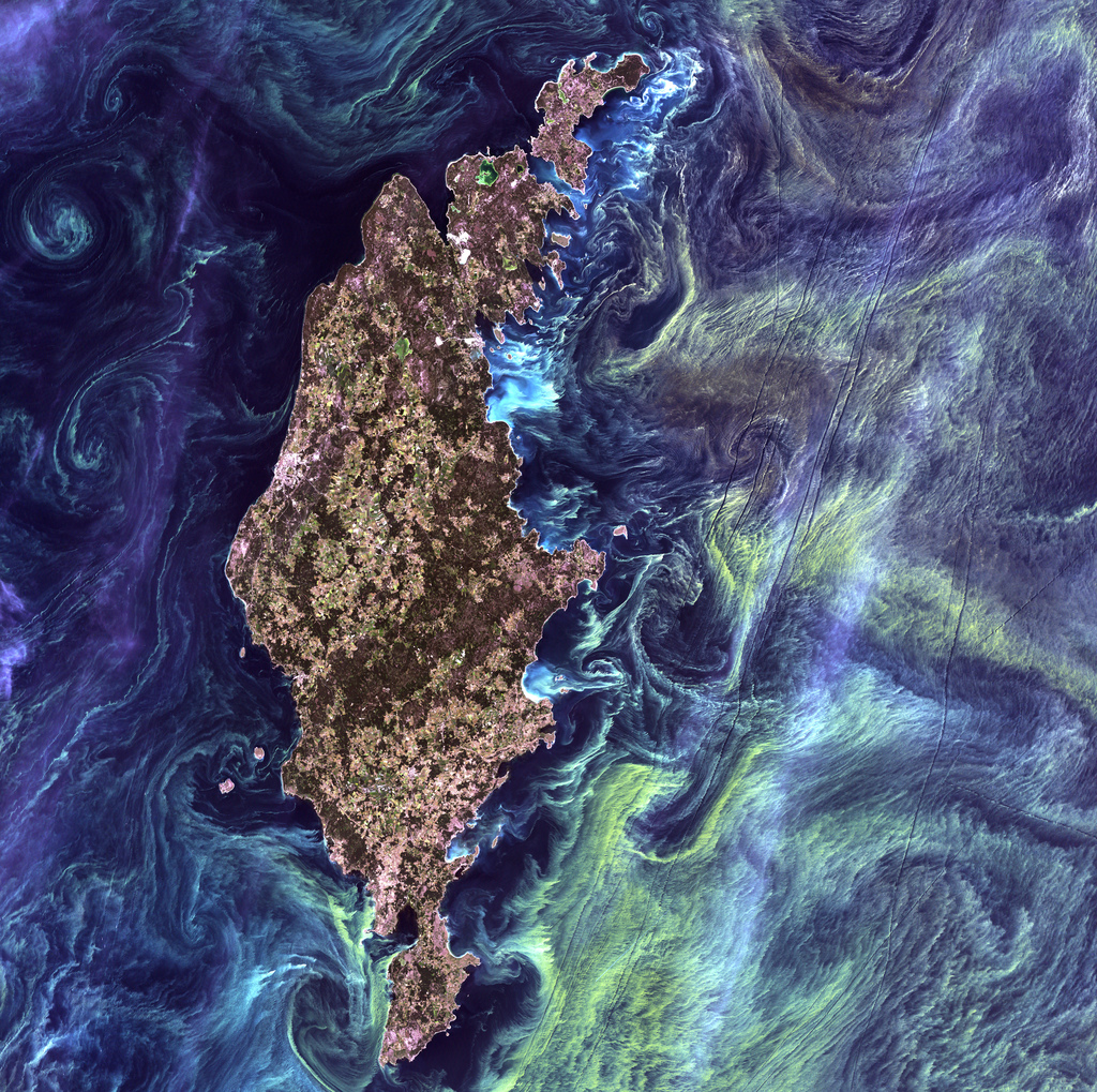 Cyanobacteria seen from space