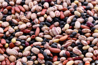 Newly discovered sugar transporter might help beans tolerate hot temperatures